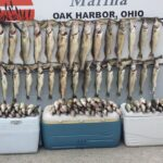 lake erie walleye fishing trips - guided charter boat trips